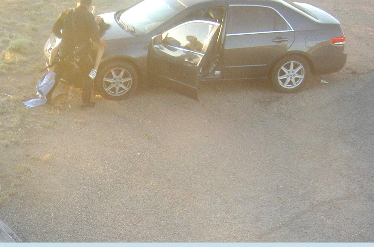 cop-sex-on-car