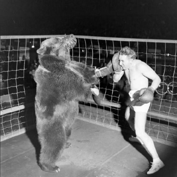 man-vs-bear