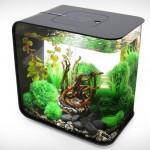 Biorb Flow Aquarium for Your Bachelor Pad