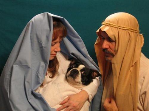 Awkward-Family-Christmas-Photo-2