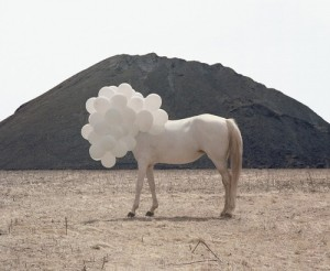 Horse-and-balloons