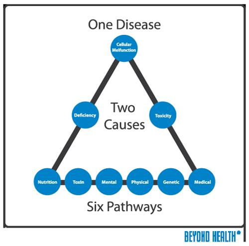 BH_healthmodel