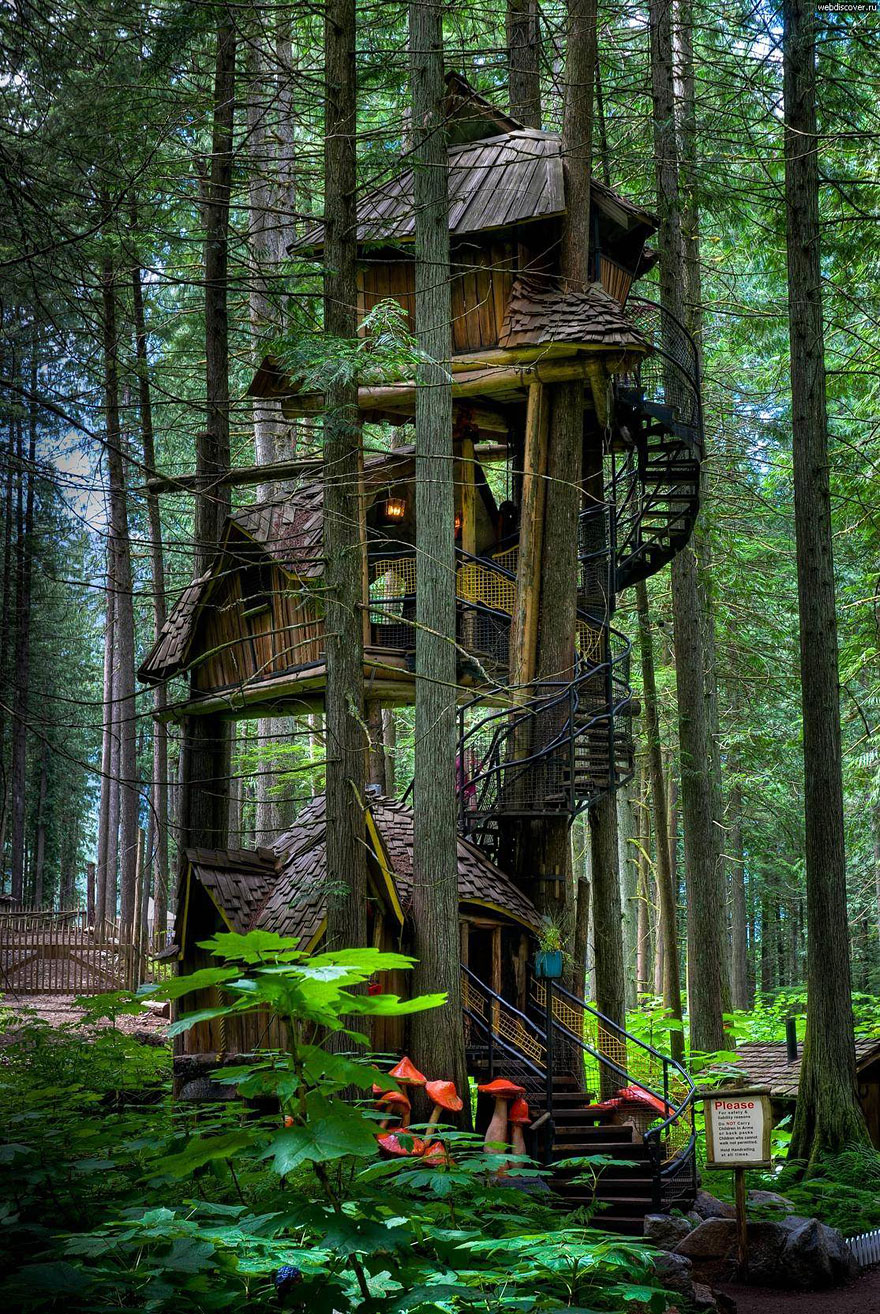 Awesome Treehouse 5