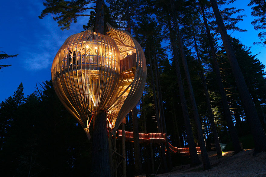 Awesome Treehouse 8